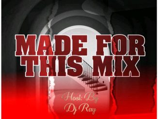DJ Ray - Made For The Mix