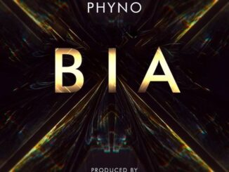 Phyno - Bia Video Download