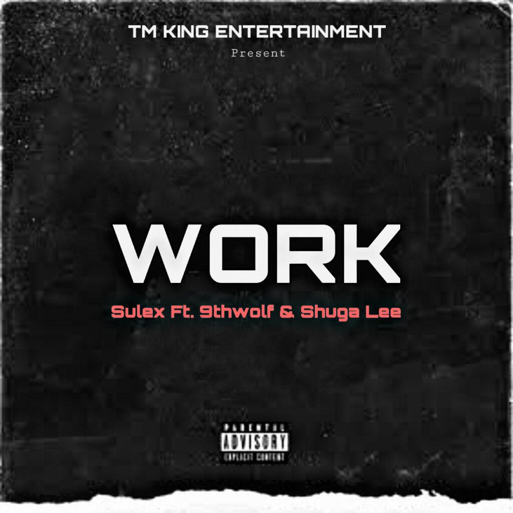 Sulex ft 9thwolf & Shuga Lee - Work MP3 Download